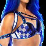 Sasha Banks WWE Pics Reputation (2)