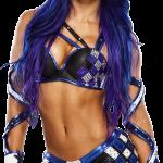 Sasha Banks WWE Pics Reputation (3)