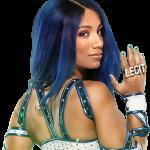 Sasha Banks WWE Pics Reputation (4)