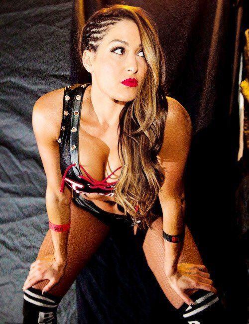 Nikki bella reputation and image (3)