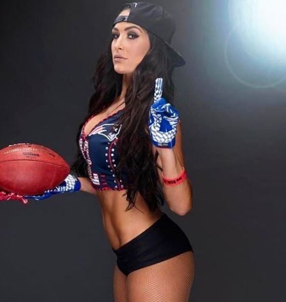 Nikki bella reputation and image (7)