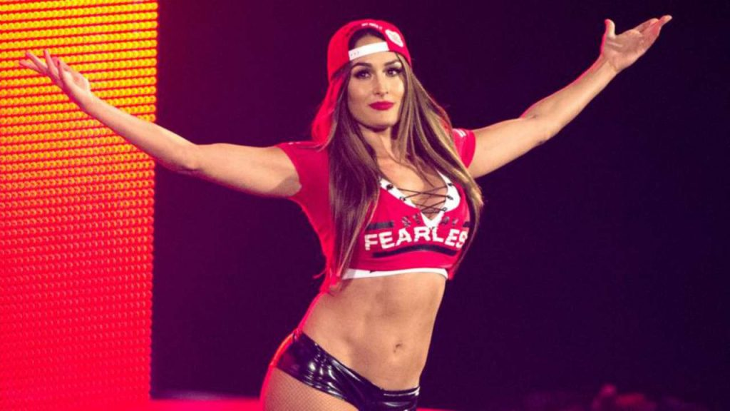 Nikki bella reputation and image (9)